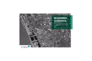 Image for 'Engage's Bluegreen Liverpool report out'